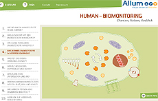 Human-Biomonitoring: Animation starten